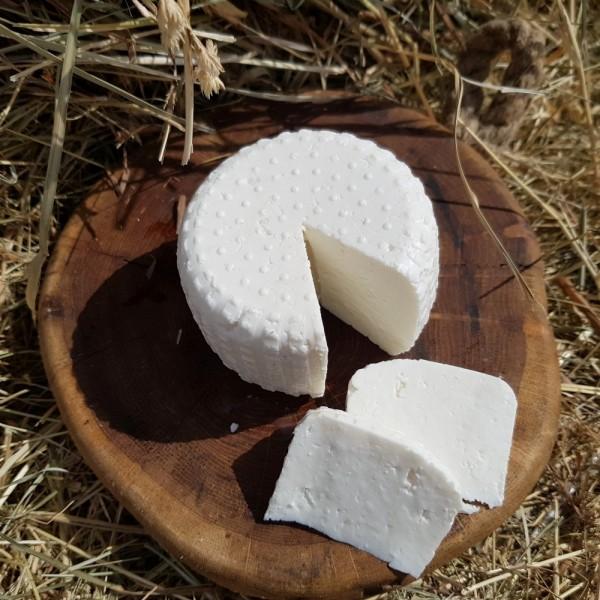 Ser owczy Antek świeży ser podpuszczkowy
