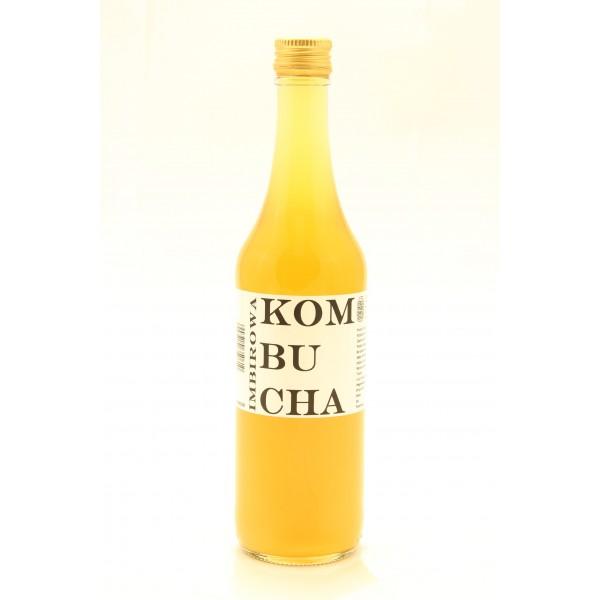 Kombucha imbirowa, herbata czarna BIO