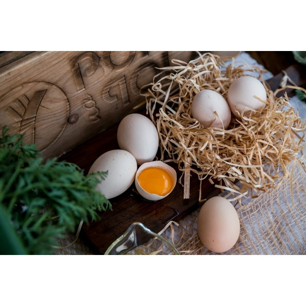 Jajka wiejskie od Państwa Michalak