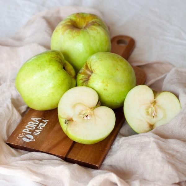 Jabłko Antonówka EKO