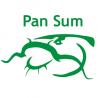 Pan Sum